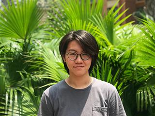 3D Designer Mei Mei